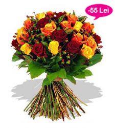 Fericire-trandafiri-148