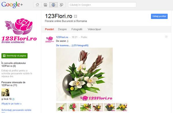 123flori_pe_google+