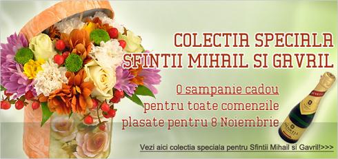 Flori de Sfintii mihail si gavril